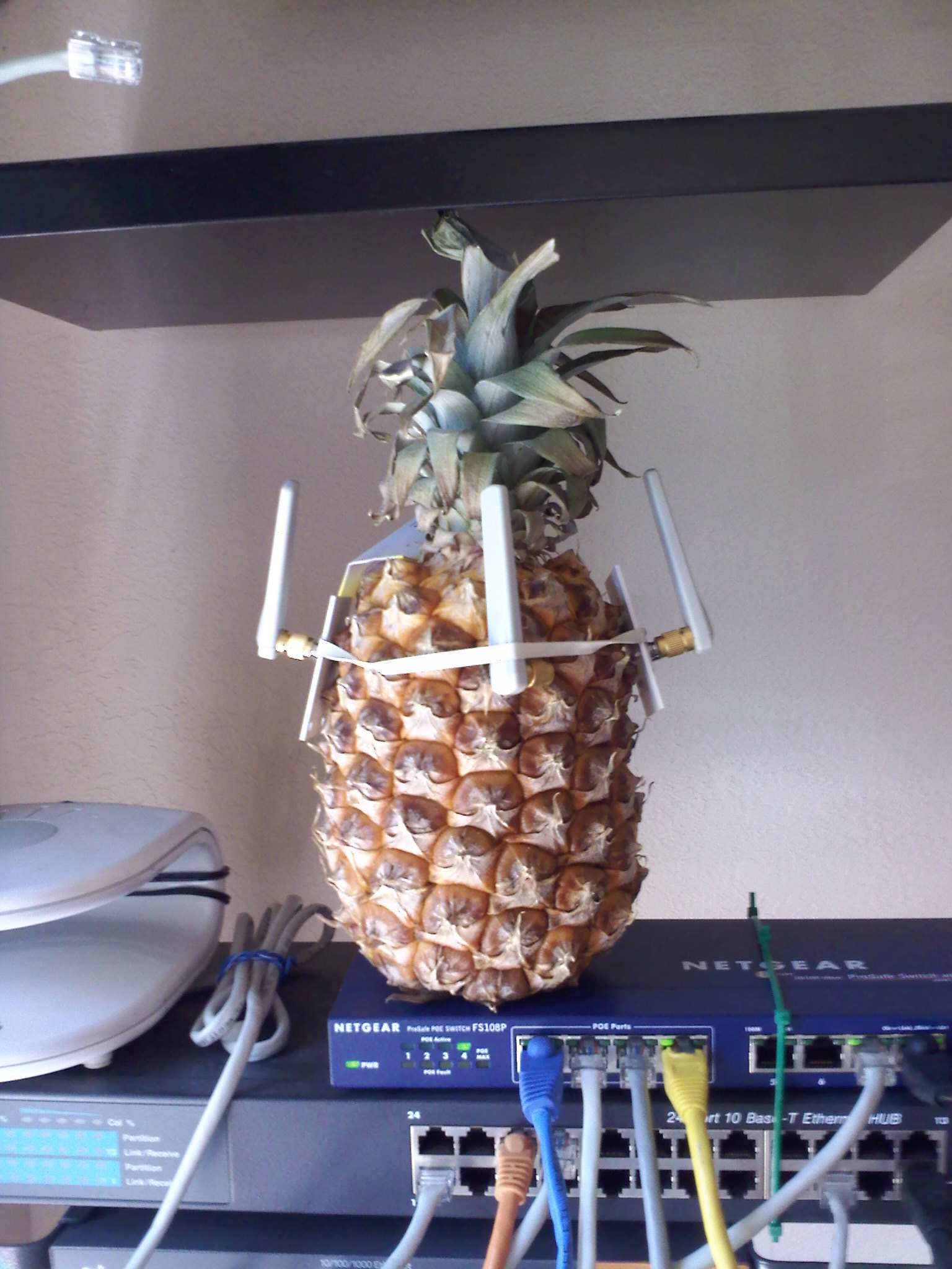 The Pineapple Symbol Of Hospitality Sf Wifi